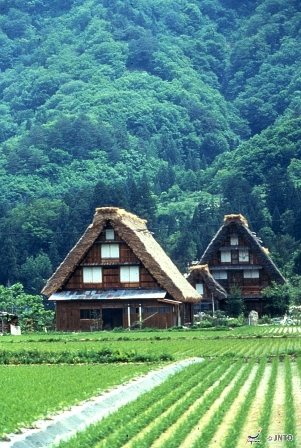 Shirakawa go small